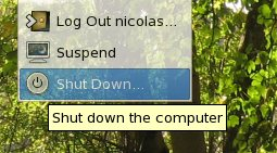 Shutdown XGL